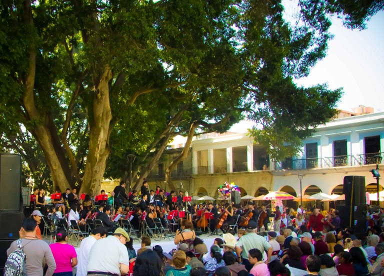 "Jo has a saying that ""if you don't hear music in Oaxaca, just wait 5 minutes and you will""!"