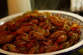 """Authentic"" Louisiana crawfish boil in St Pete's"