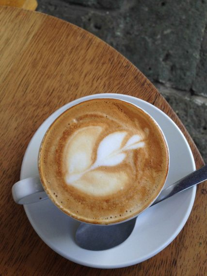"""Oaxaca Cafe Brujula"""