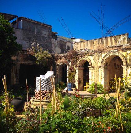 """Oaxaca Matria Jardin Arterapeutico 2"""