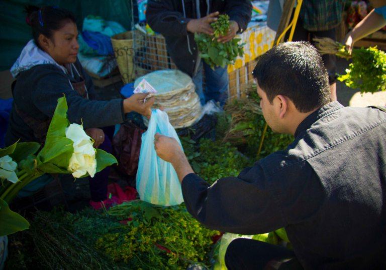"""Origen Oaxaca Castellanos Abastos shopping"""