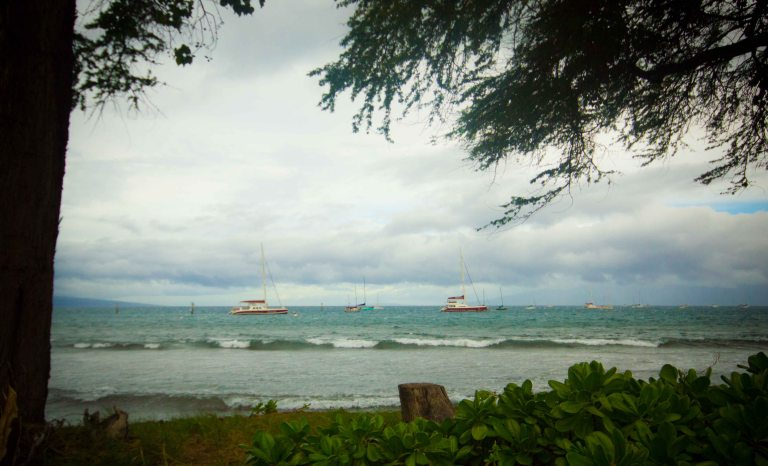 """Aloha Mixed Plate Lahaina view"""