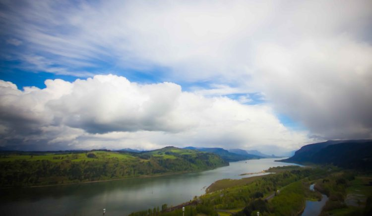 View of the Columbia River from Vista House.