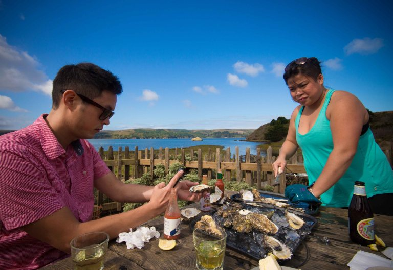 Hog Island shucking