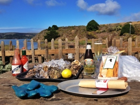 Sonoma Afterthoughts and Oysters in Tomales Bay