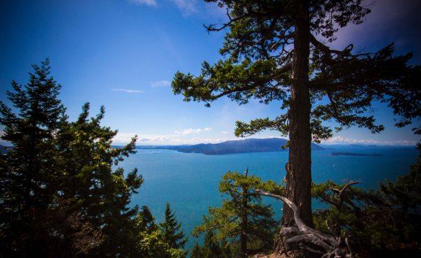 Lummi Island Baker preserve hike