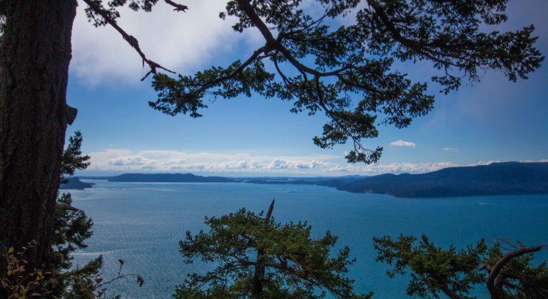 Lummi Island Baker Preserve trail