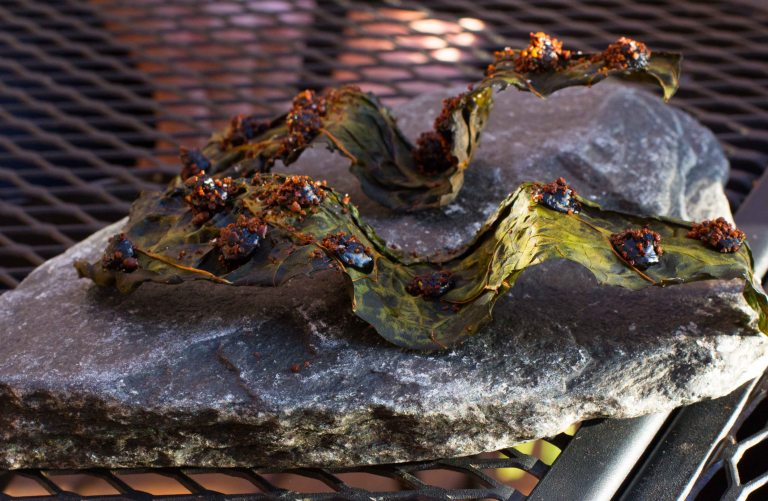 """Willows Inn Lummi kale truffle"""