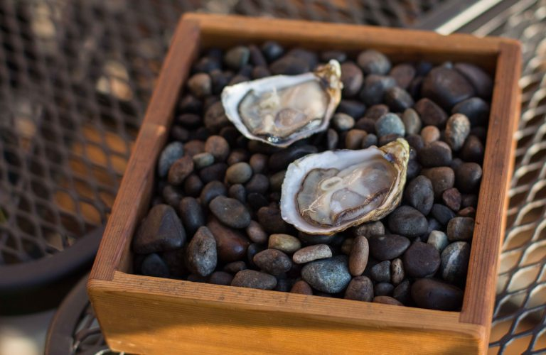 """Willows Inn Lummi oyster Wetzel"""