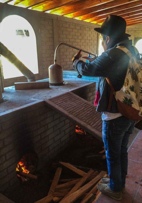 Distillation mal de amor matatlan oaxaca mezcal