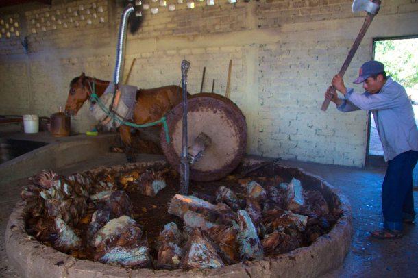 """Wahaka mezcal Oaxaca mill San Dionisio pinas"""