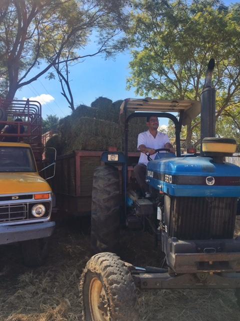 rodolfo-castellanos-tractor