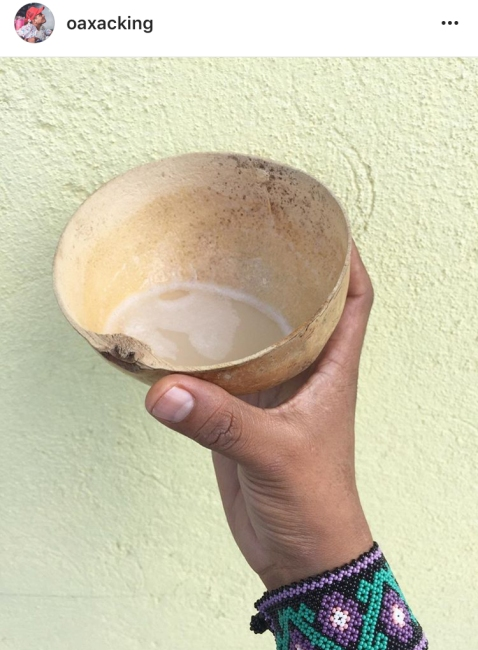 pulque-oaxacking