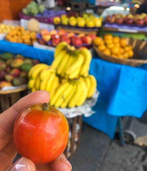 Tlacaloula plum