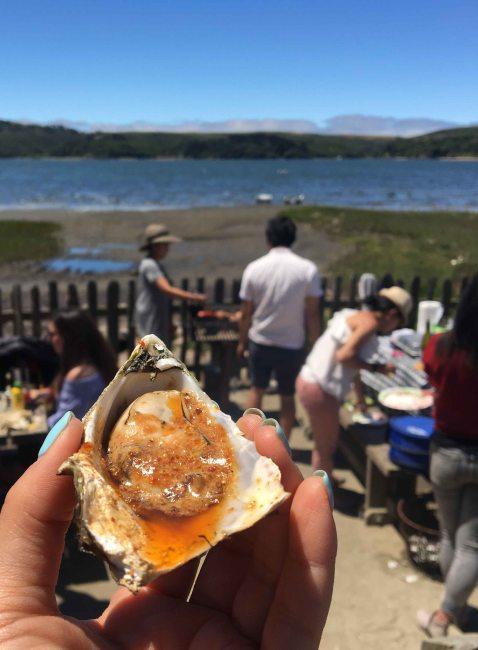 Hog Island bbq oyster