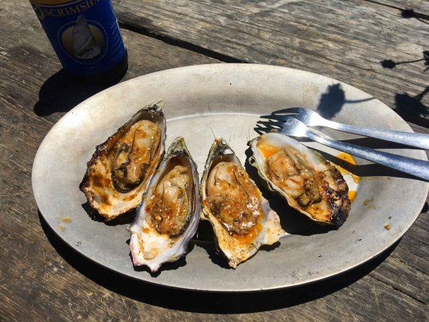 Hog Island oyster bourbon