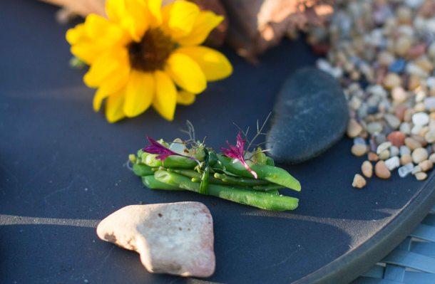 Singlethread Farm Healdsburg Sonoma beans