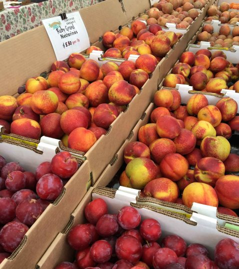 Stone fruit ferry market