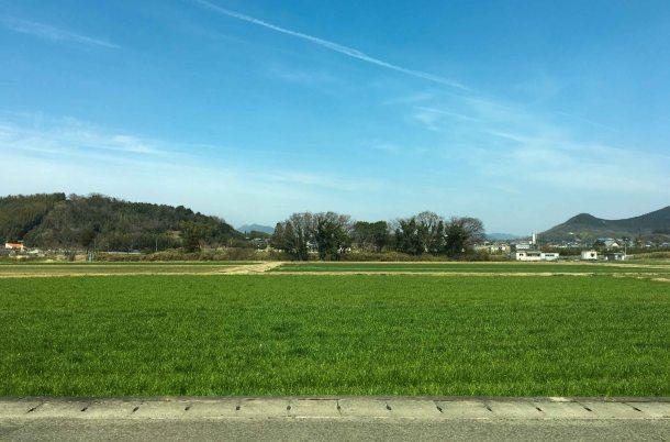 Kagawa udon tour