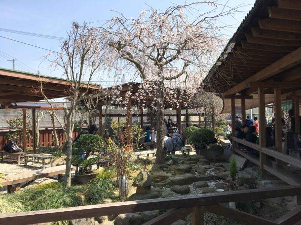 Yamagoe udon seat