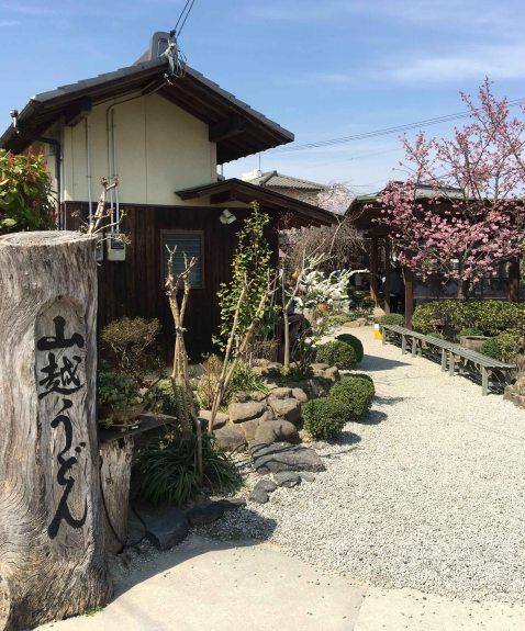 Yamakoshi udon back
