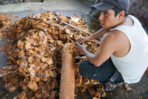 Lalocura Oaxaca baked pina