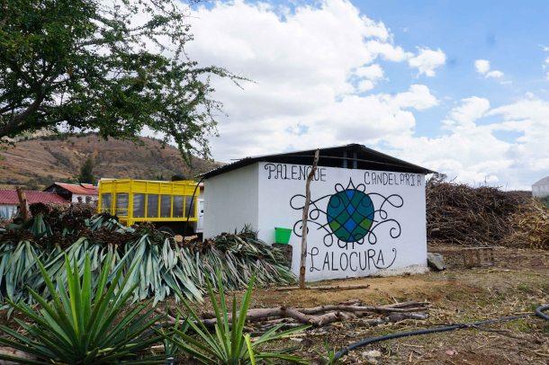 Mezcal Lalocura Oaxaca palenque