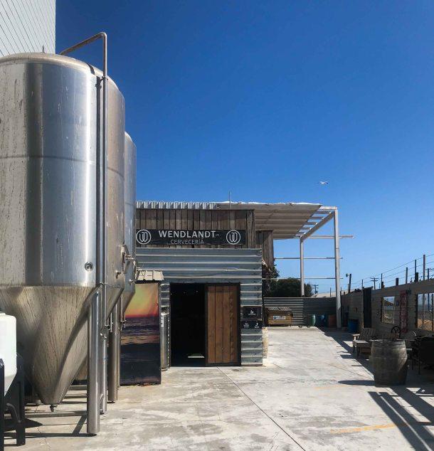 Wendlandt cervecereia Ensenada