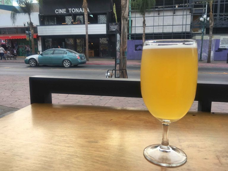 Tijuana lucida teorema beer