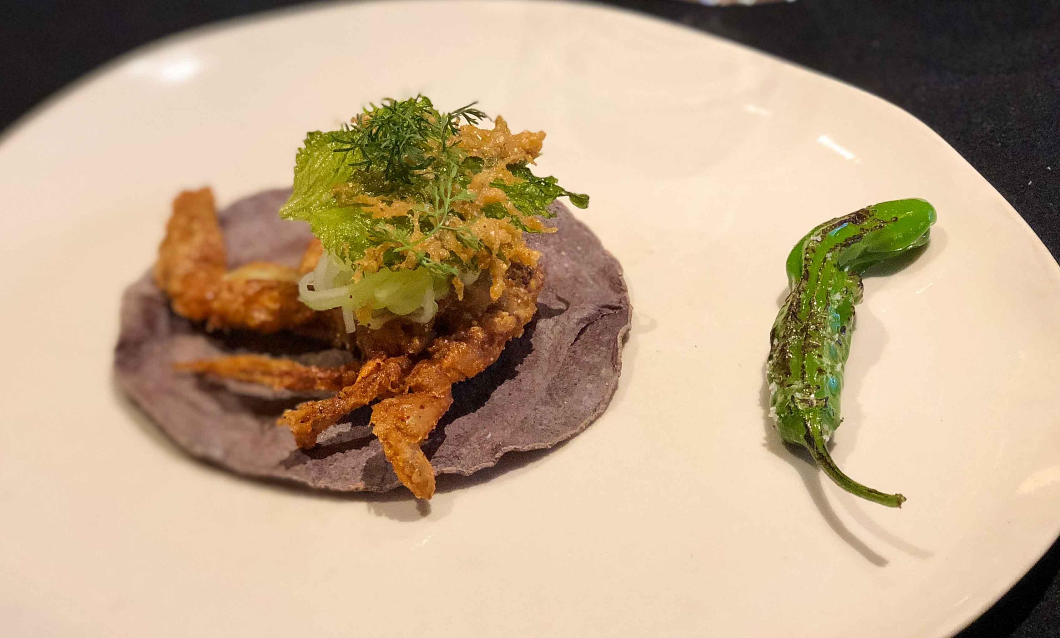 Pujol taco omakase softshell crab